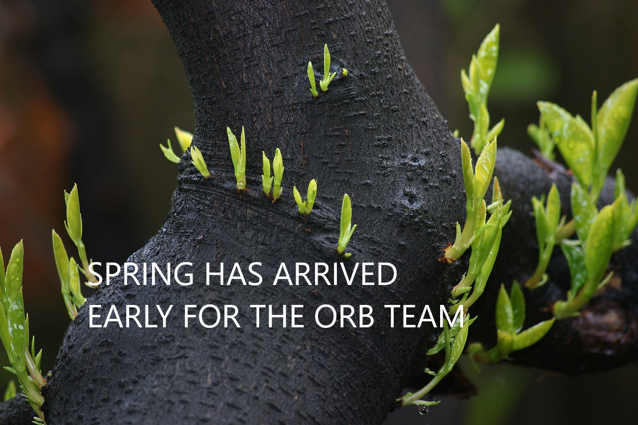 for the team at ORB, spring has