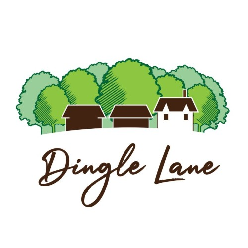 Dingle Lane - Accountnat and Management Consultant