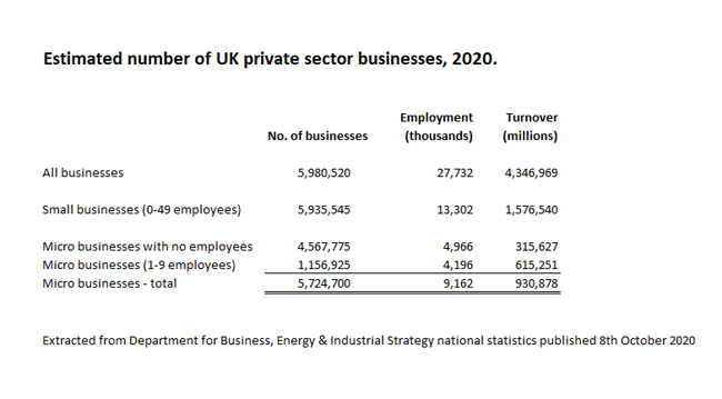 Statistics showing the number of small businesses in the private sector