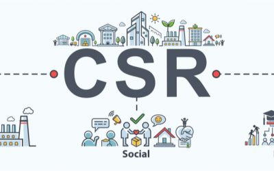 What does CSR mean to Wellity?